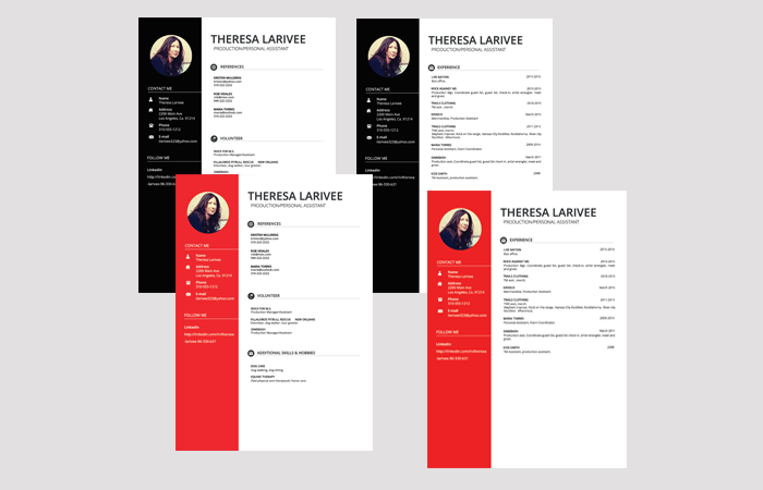 Image of Theresa Larivee Resume Example